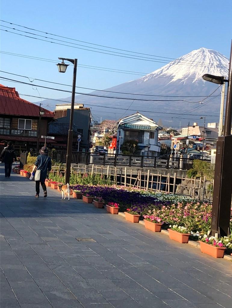 view of mount fuji from Fujinomiya, Shizuoka prefecture 富士宮市から見える富士山