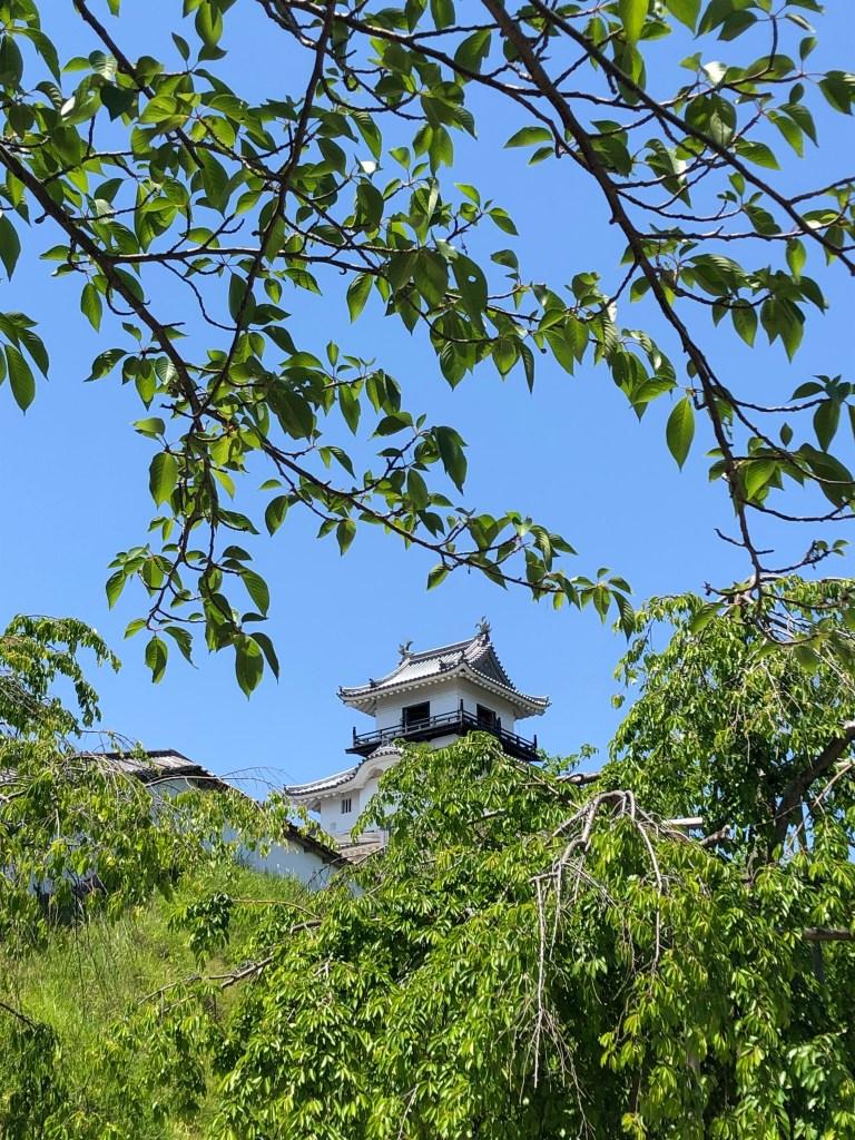 静岡県掛川城 Kakegawa castle in Shizuoka prefecture, Japan