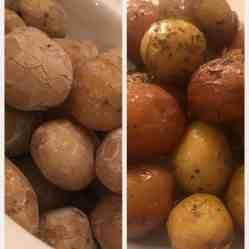 Syracuse Salt Potatoes [left], Herb Potatoes [right]