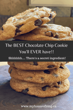 Chocolate Chip Cookie Pinterest Pin