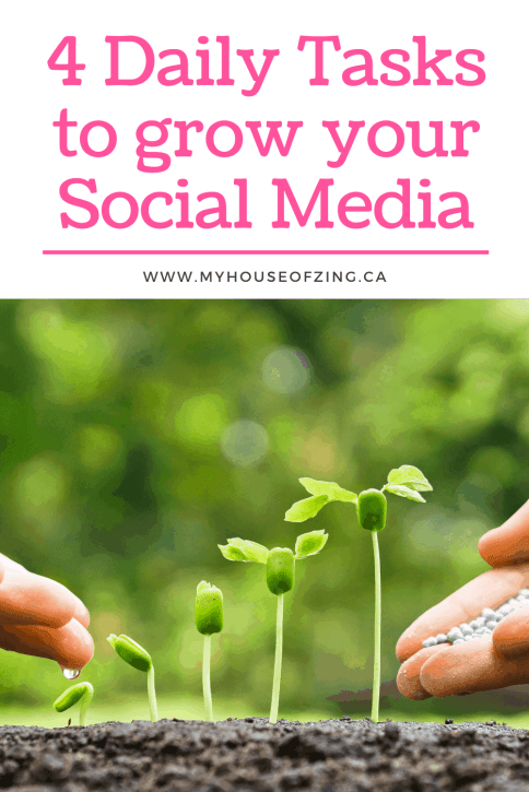 4 Daily Tasks to grow your Social Media