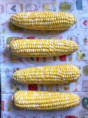 Clean Corn Ears