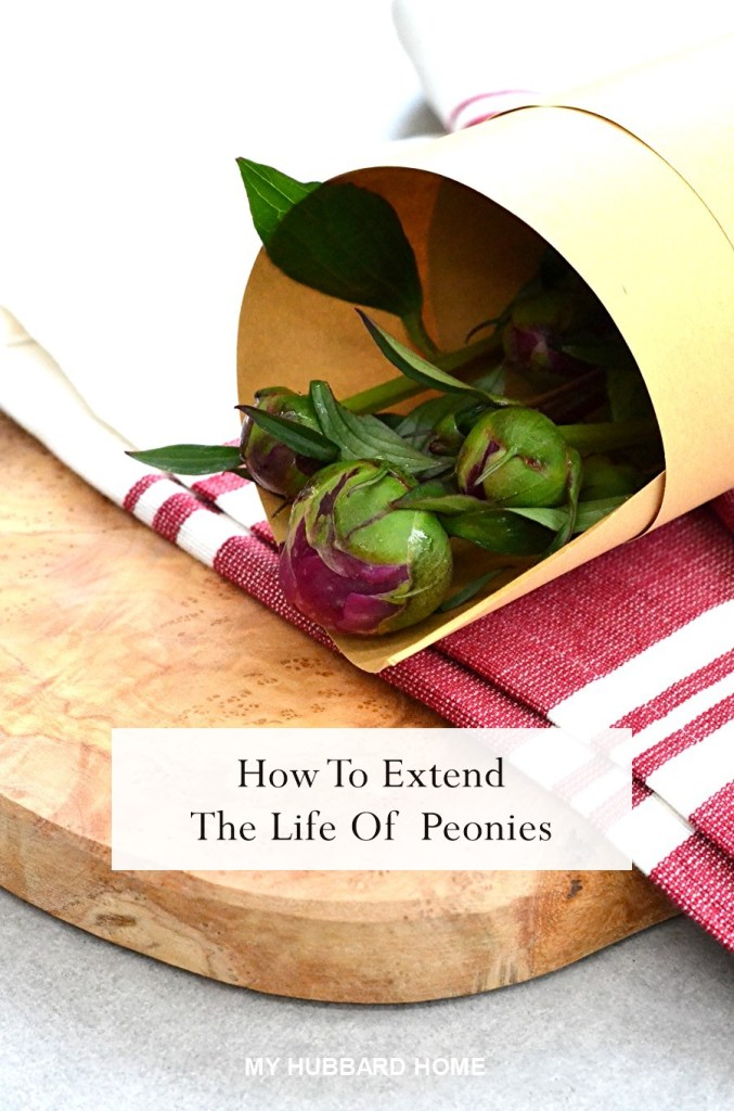 How To Extend The Life Of Your Peony