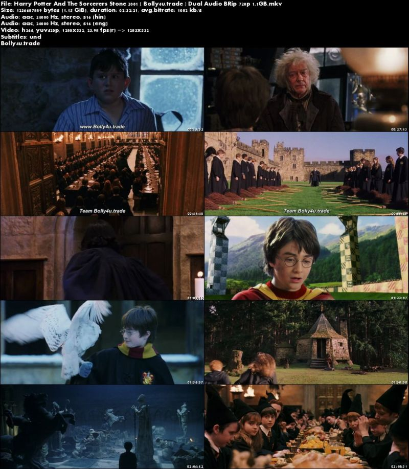 harry potter and the sorcerers stone 2001 brrip 480p hindi