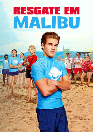 Malibu Rescue 2019 WEBRip 700MB Hindi Dual Audio 720p ESub Watch Online Full Movie Download bolly4u