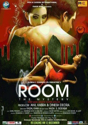 Room The Mystery 2015 WEB-DL 650Mb Hindi 720p Watch Online Full Movie Download bolly4u