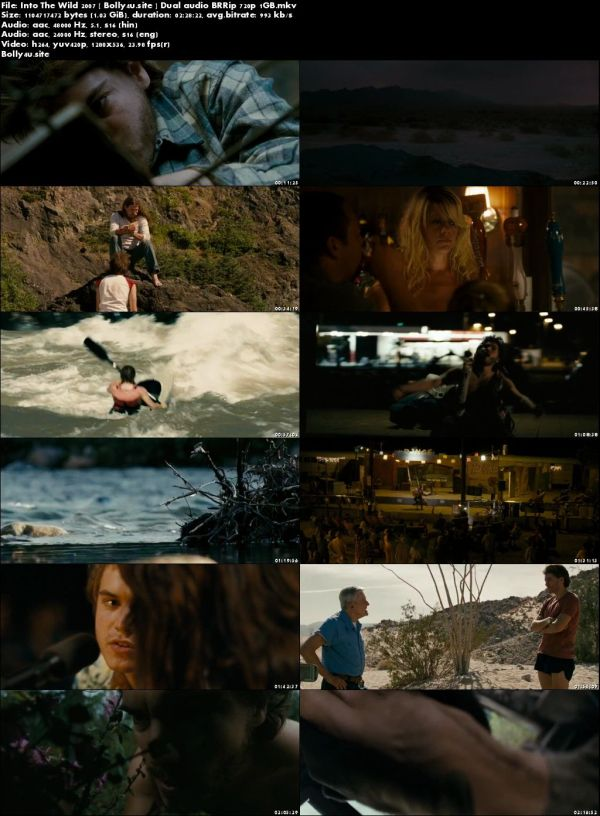 Into The Wild 2007 BRRip 1GB Hindi Dual Audio 720p Download