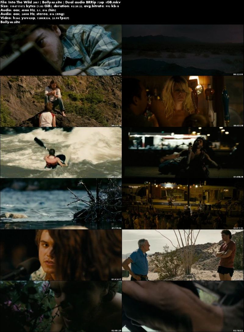 Into The Wild 2007 BRRip 450MB Hindi Dual Audio 480p Download