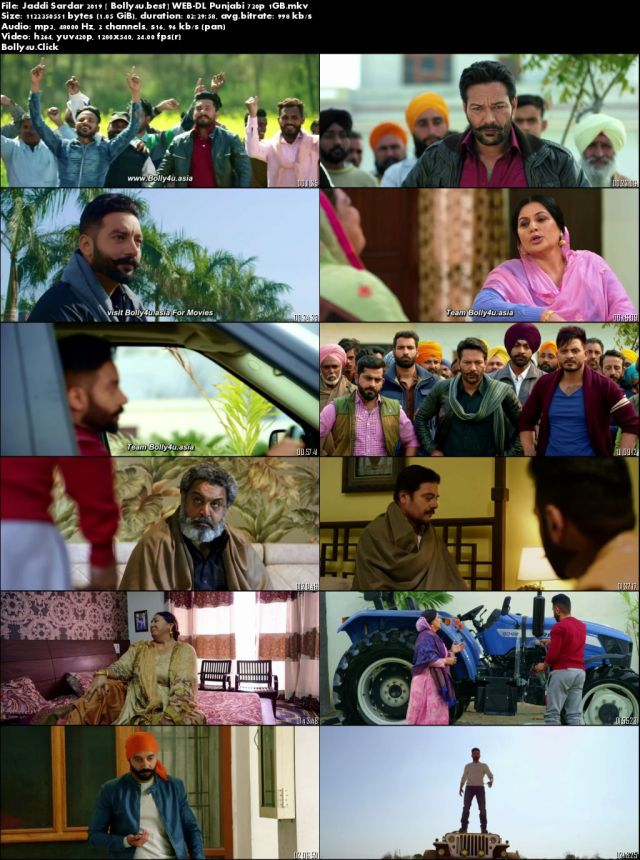 Jaddi Sardar 2019 WEB-DL 450MB Punjabi 480p Download
