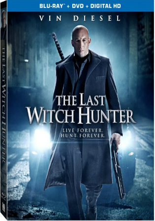 The Last Witch Hunter 2015 BluRay 800Mb Hindi Dual Audio 720p Watch Online Full Movie Download bolly4u