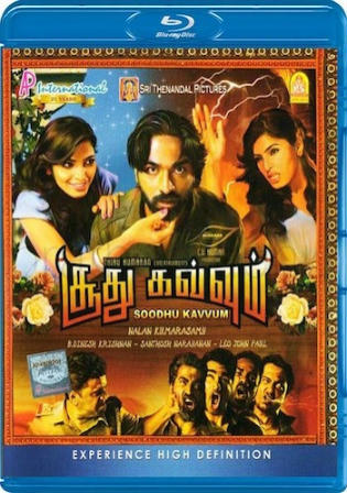 Soodhu Kavvum 2013 BluRay 400mb UNCUT Hindi Dual Audio 480p Watch Online Full Movie Download bolly4u