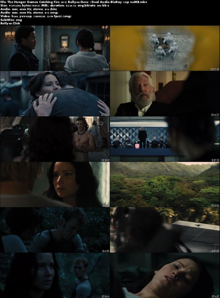 The Hunger Games Catching Fire 2013 BRRip 450Mb Hindi Dual Audio 480p Download