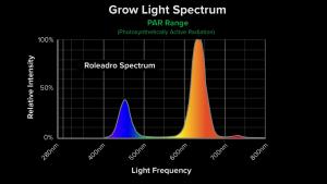 Roleadro Spectrum