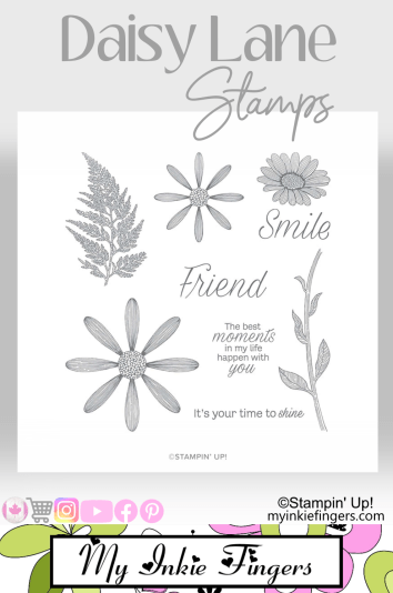 Stampin' Up! Daisy Lane Stamps Daisy Lane Card