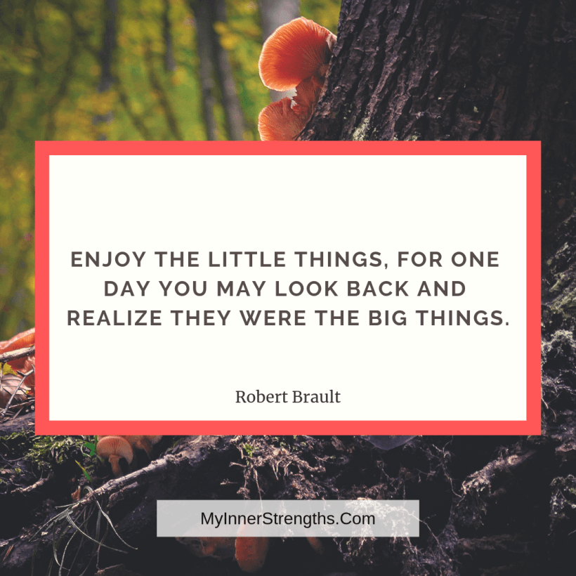 Gratitude Quotes and Affirmations 11 My Inner Strengths Enjoy the little things, for one day you may look back and realize they were the big things.