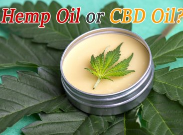 What is the difference between CBD oil, cannabis oil and hempseed oil?