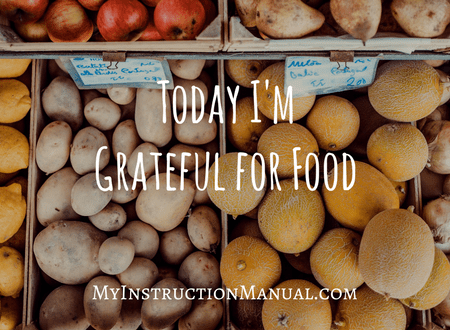 Today I'm Grateful For Food. My Instruction Manual.
