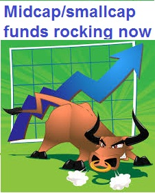 Top Performing mid cap mutual funds rocking now