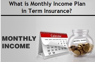 What is Monthly Income Plan in Term Insurance