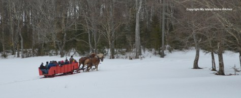 Sleight Ride at Potts Farm, Bonshaw, PEI