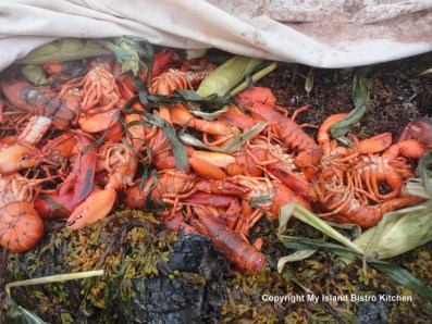 PEI lobsters and corn on the cob being cooked in a sandpit on the beach