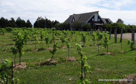 Rossignol Winery, Little Sands, PEI