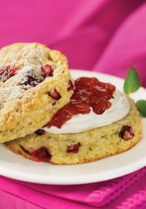 "Cranberry Scones from ""The Best of Bridge Holiday Classics"". Photo courtesy Robert Rose Inc., publisher"