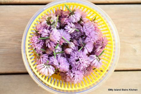Chive Blossoms in Salad Spinner