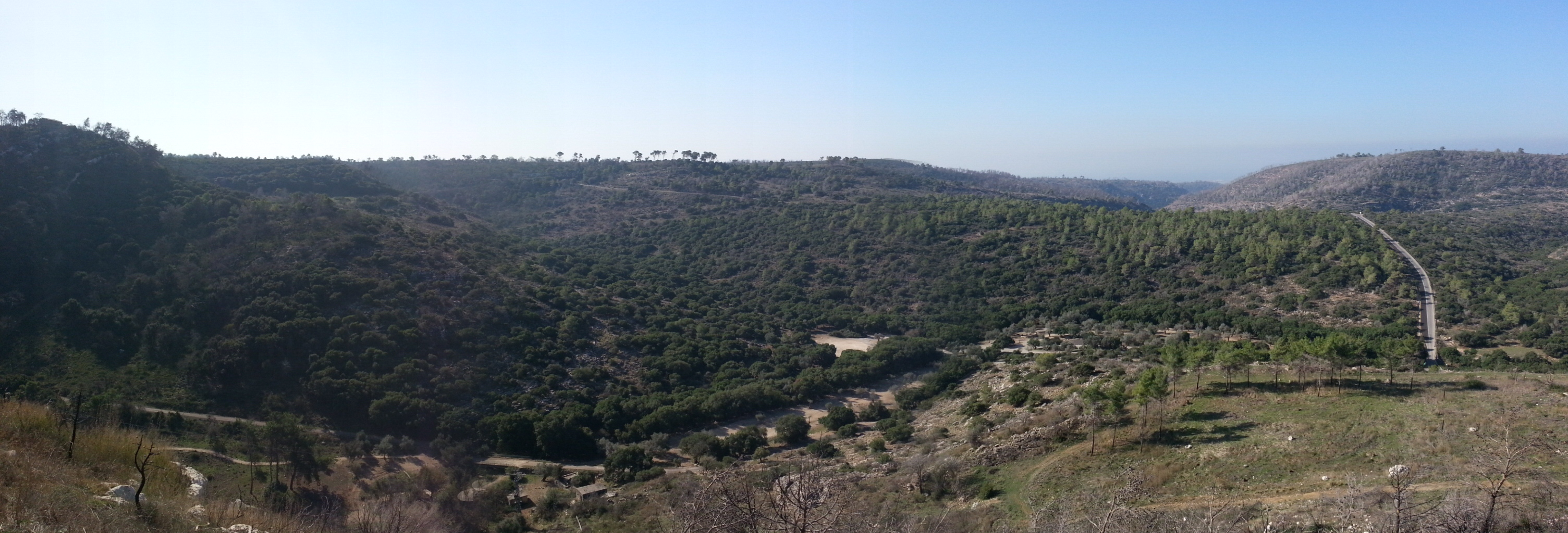 Panorama over Nachal Oren from Mishmar HaCarmel