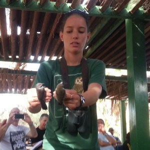 Our guide shows us some migrating birds in the Eilat Bird Park