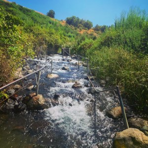 Hiking up the Ein Tina stream in the Golan Heights with the assistance of some helpful hand railings