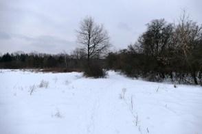 Дорога к Северскому Донцу