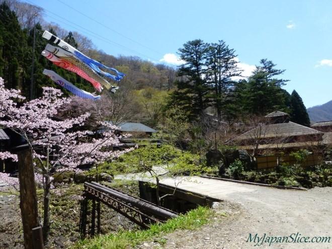 Japan_Spring_Niigata