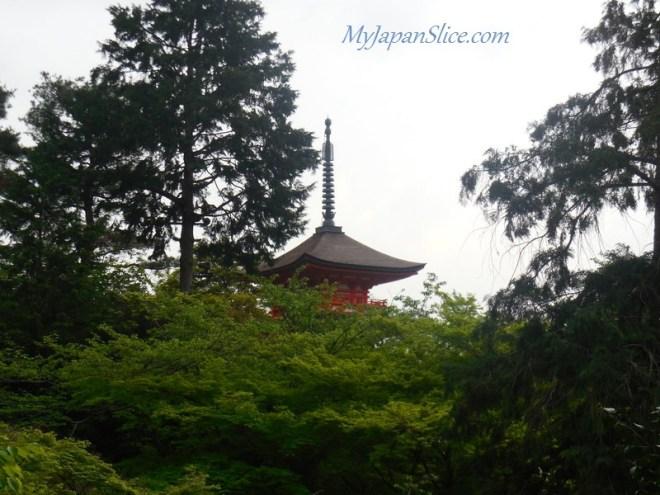 Japan_Summer_Kyoto