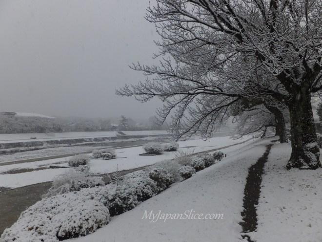 Japan_Winter_Kyoto