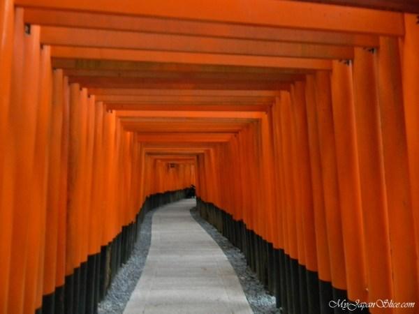 japan_torii_fushimi_inari