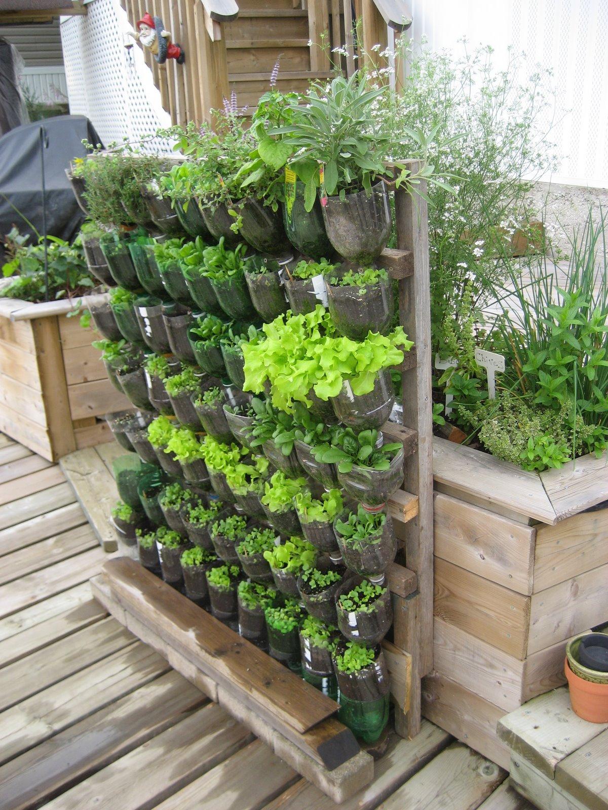 Top 10 DIY Vertical Garden Ideas That You Will Find Helpful on Backyard Landscape  id=98831