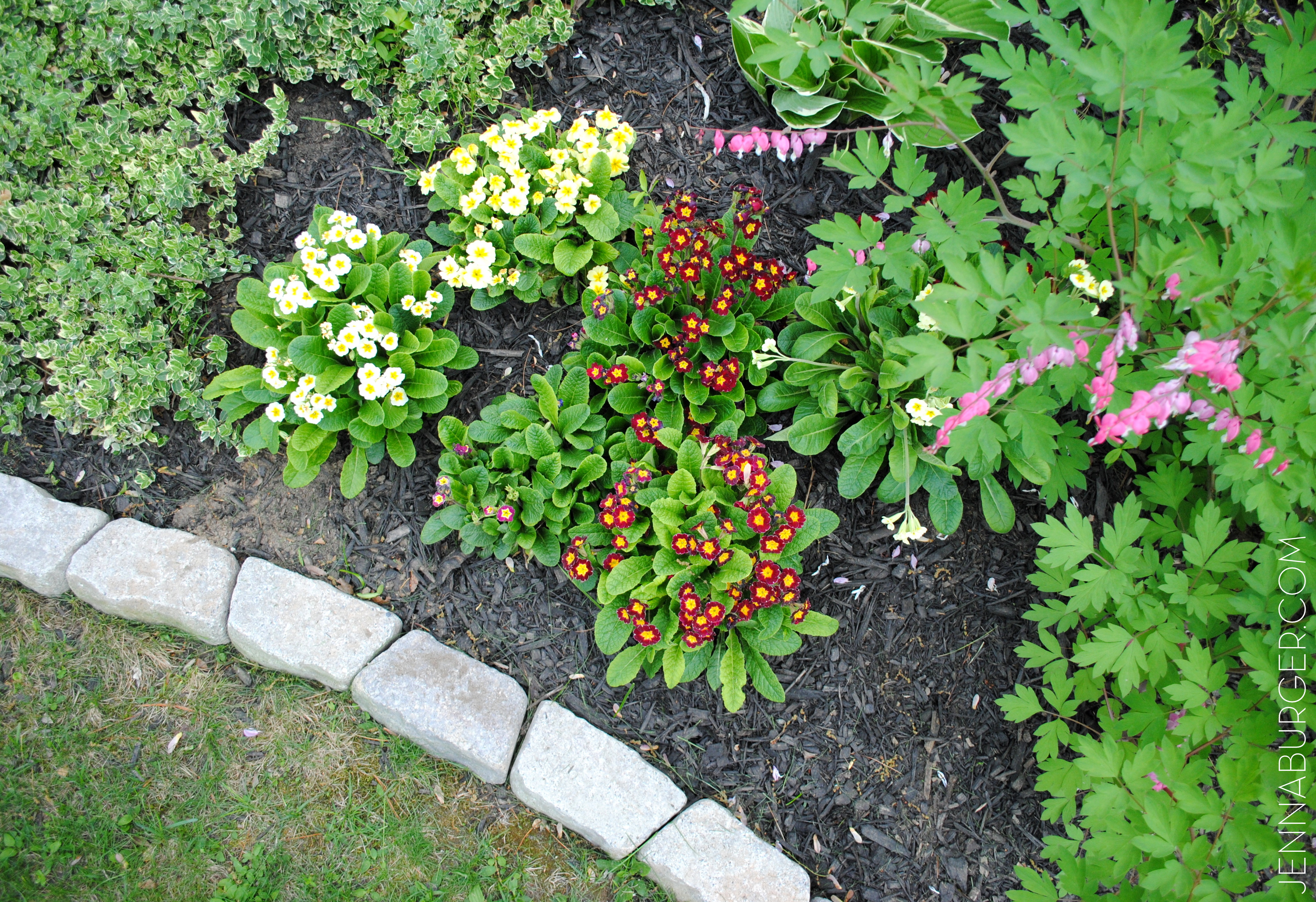 The Easiest Garden Edging Ideas That Are Budget Friendly on Backyard Patio Landscaping id=21800