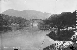 Ancestry - Lawrence Bricin Bridge 1864-1914