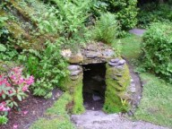A Well in Derrynane Gardens June 2013