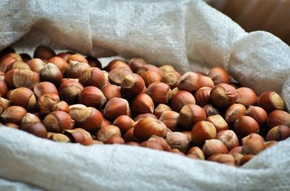 Castañas - Chestnuts