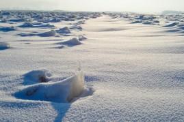 De repente el paisaje cambia, pocos bloques de hielo y superficies más lisas cubiertas de nieve - Suddenly the landscape changes, few ice blocks and smoother surfaces covered with snow