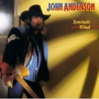johnanderson-seminole-wind
