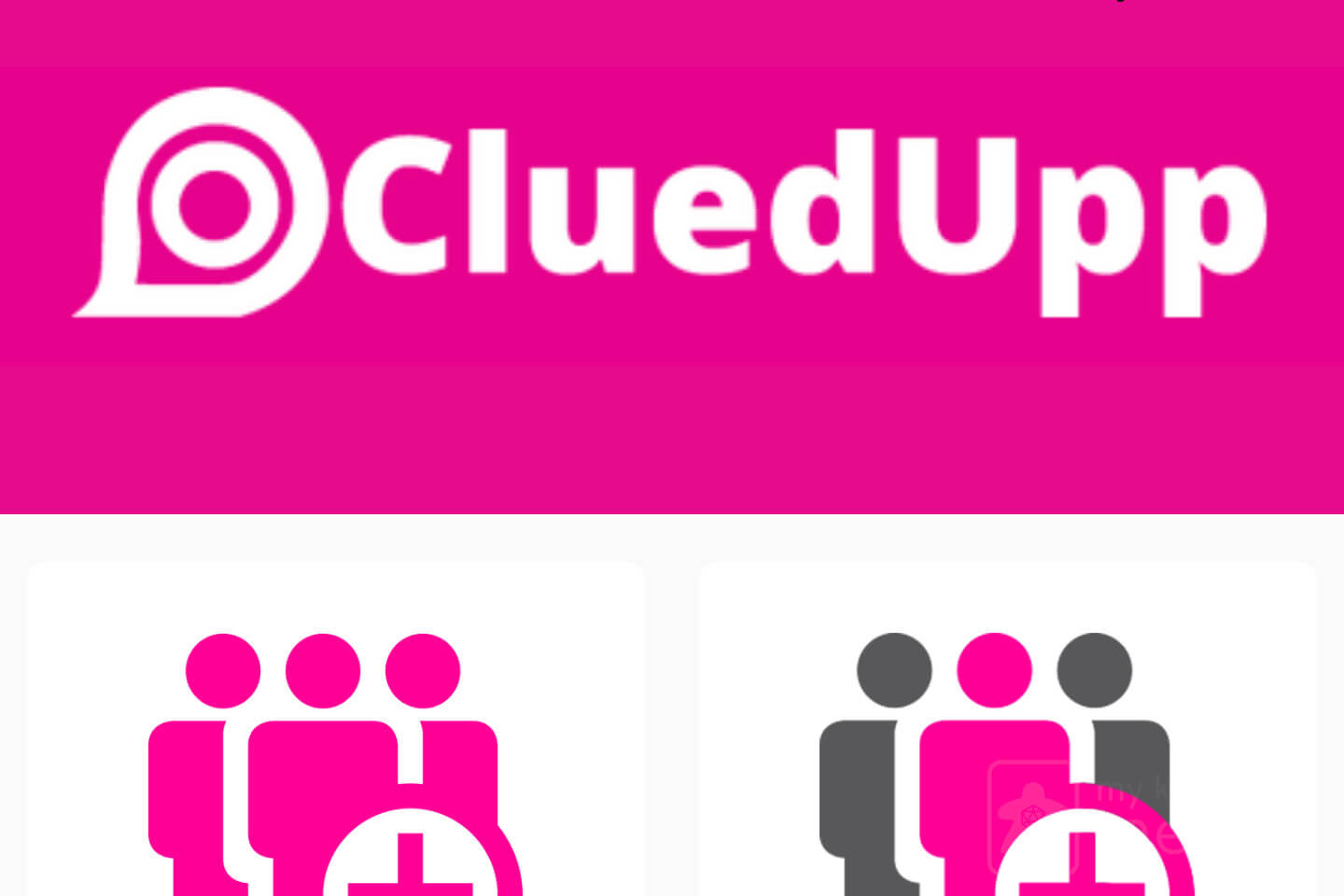 Cluedupp Review
