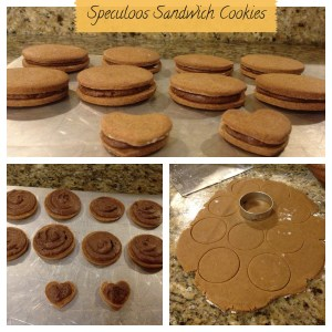 speculoos6