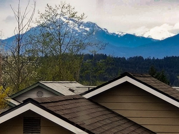 View of Olympic Mountains from Master Bedroom