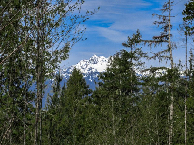 "View of ""Brothers"" Peaks from 1455 Shearwater Ln NW, Seabeck, WA 98380"