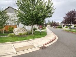 Entrance to Silverleaf Neighborhood