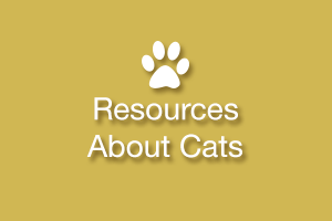 Good Cat (and Other Pet) Websites