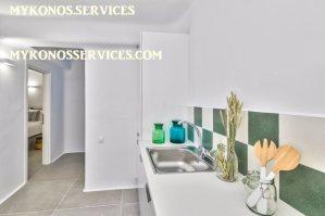 rent villa mykonos - mykonos services 11